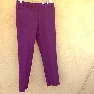 Purple dress pants
